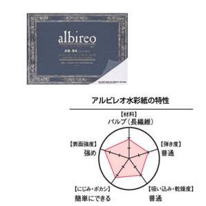 albireo アルビレオ 水彩紙 ブロック AB-PC (ハガキ)|yumegazai