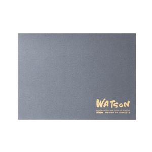ミューズ 水彩紙 ワトソンブロック 300g (超特厚口) F2サイズ 15枚綴り NW-1402 yumegazai