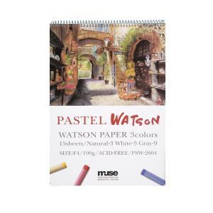 ミューズ パステル紙 パステルワトソンブック ワトソン3色 190g (厚口) P2サイズ 15枚綴...