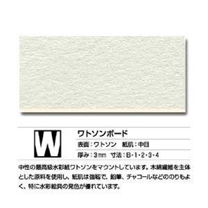 ボード W 片面 (ワトソン紙) 中目 B1 (5枚入)【メーカー直送・代引き不可】 yumegazai