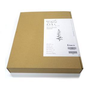 日本ヴォーグ社 植物標本スターターキット|yumegazai