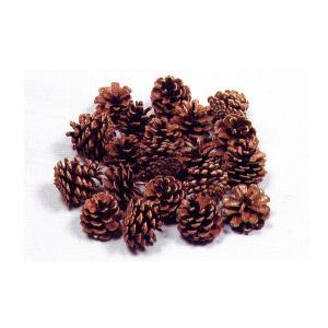 松ぼっくり 20個入クリスマスリース 材料 飾り|yumegazai