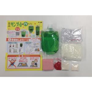 自由研究&工作 触れる図鑑 食品サンプルを作るキット yumegazai