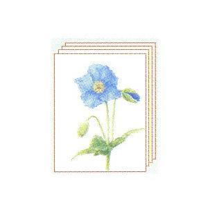 塗り絵 塗り絵物語 かわいい花編 青いケシ|yumegazai