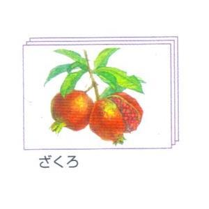 塗り絵 塗り絵物語 枝付の果物編 ざくろ|yumegazai