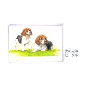 塗り絵物語 犬たち猫たち編 ※犬の兄弟 ビーグル|yumegazai