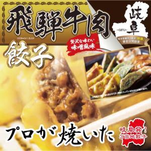 飛騨牛肉餃子 10個入り(180g) 岐阜 餃子 お取り寄せ 冷凍|yumegyoza