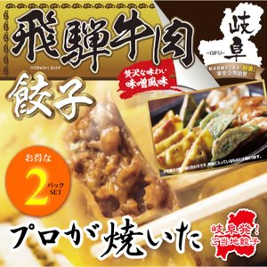 飛騨牛肉餃子 お得な10個入り(180g)×2パックSET 岐阜 餃子 お取り寄せ 冷凍|yumegyoza
