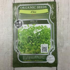 【有機種子】 チアシード スプラウト グリーンフィールドプロジェクト|yumenetshop