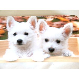 【sale】愛犬家におすすめ!小犬2匹転写ラウンドタイプ長財布【メール便無料】 yumenoren 03
