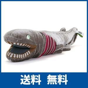 生きた化石と呼ばれる深海のサメ、ラブカのぬいぐるみ◎生きた化石と呼ばれる深海のサメ・ラブカ  ラブカ...