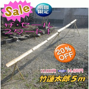 流しそうめん竹セット(竹連太郎 5M)
