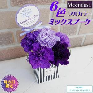 母の日 2021 花 ギフト プレゼント 80代 70代 60代 サントリー ムーンダスト ブルー カーネーション 6色フルカラー そのまま飾れる スタンドタイプ ミニブーケ|yummy