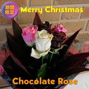 クリスマス期間限定 ホンモノそっくり 甘い香りのチョコレートローズ5本の花束 yummy