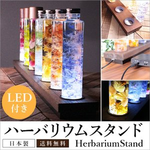 ハーバリウムスタンド 70cm LED照明付き 天然木SPF材 ブリック型収納  LEDインテリア 幅70cmX奥行9cm ボトル型4.5cm対応|yumugiya