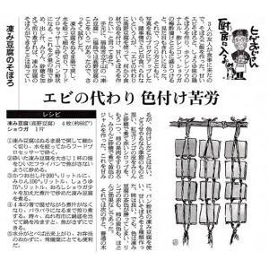 立子山凍み豆腐2連(24枚×2束)箱入り|yunokawa|10