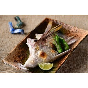 ゆら鯛 鯛 鯛カマ(500g 8〜9個入り《3〜4人前》) yuradai-store