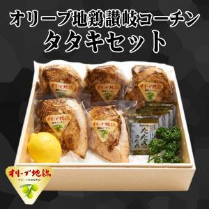 送料無料 オリーブ地鶏 讃岐コーチン 香川県 タタキセット タレ付き 1kg お取り寄せ グルメ 冷凍 肉の日 G014|yurakuya-udon
