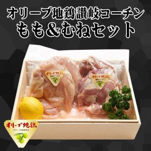 送料無料 香川県産 オリーブ地鶏讃岐コーチン もも&むねセット 1kg もも肉 むね肉 お取り寄せ グルメ 冷凍 肉の日 G015|yurakuya-udon