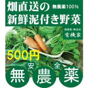 無農薬野菜詰め合わせ 旬の無農薬100%野菜セット 500円|yuukiya0097