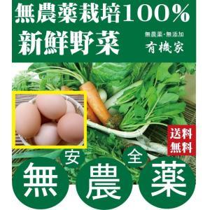 卵は品質保持のためクール便でお届けします。(クール便代込み) 天然素材の飼料で贅沢に育てた健康な鶏の...