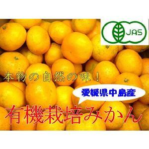 【予約】瀬戸内 有機栽培みかん 5kg箱【11月中旬から1月中旬ころ】