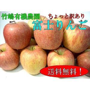 竹嶋有機農園のふじりんご(中玉)約10kg ちょっと訳あり ...
