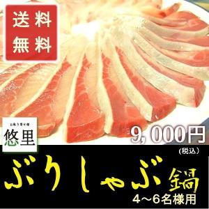 寒ブリ 鰤しゃぶ鍋セット 4から6名様 (ぶり720g)  ...