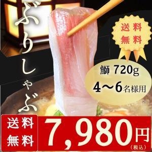 鰤しゃぶ ぶりしゃぶ 鍋 4-6名様用 720g  お祝い ギフト 送料無料 *鍋野菜なし|yuuri