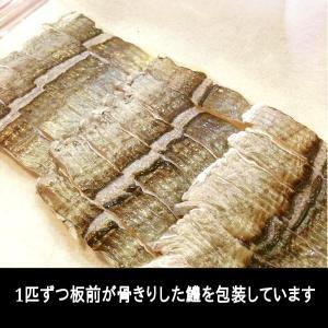 淡路の鱧すき鍋セット  4から6名様用 はもすき 鱧鍋 yuuri 02