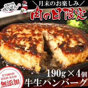 \肉の日 限定/ 肉 牛肉 冷凍 牛100% 無添加 牛生 ハンバーグ 190g×4 特別販売|yuuzen-hb