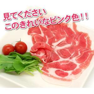 肉 豚肉 豚肩ロース スライス 500g 精肉 特価 セール 冷凍 切り落とし 訳あり わけあり ワケあり|yuuzen-hb|03