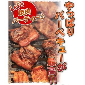 肉 豚肉 豚肩ロース 焼肉用 500g 精肉 特価 セール 冷凍 切り落とし 訳あり わけあり ワケあり yuuzen-hb 03