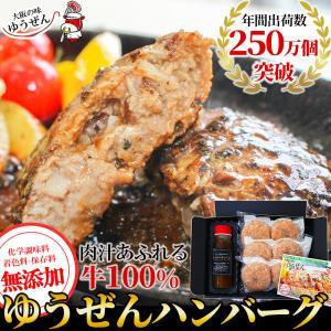 お中元 ギフト 贈答 ハンバーグ 冷凍 肉 牛肉 無添加 牛100% ゆうぜんハンバーグ 150g×6個入 (2個真空×3パック) 専用ソース セット グルメ|yuuzen-hb