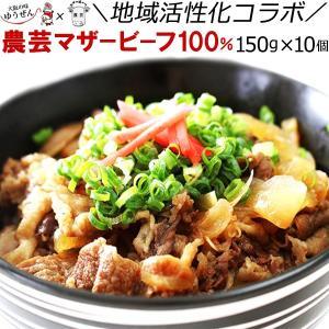 牛丼 冷凍 レトルト 国産牛肉 農芸マザービーフ 100% 牛丼 150g×10個 大阪産(おおさかもん)|yuuzen-hb