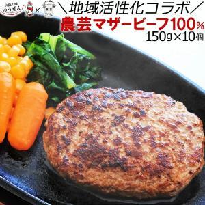 ハンバーグ 冷凍 国産牛 無添加 農芸マザービーフ 100% ハンバーグ 150g×10個(1個真空)|yuuzen-hb