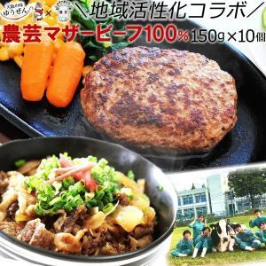 ハンバーグ 牛丼 セット 冷凍 国産牛 無添加 農芸マザービーフ 100% ハンバーグと牛丼 10食セット (各5食)|yuuzen-hb
