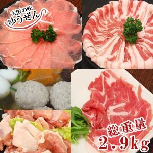 鶏肉 豚肉 鍋 肉 セット たっぷり2.9kg 5種の 鍋セット 豚ロース 豚バラ 豚肩ロース 鶏もも 鶏つみれ×3パック|yuuzen-hb