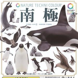 ネイチャーテクニカラー 南極 シークレット入り 全8種セット いきもん ガチャポン yuyou