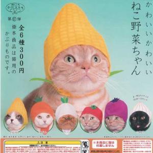 かわいいかわいい ねこ野菜ちゃん 全6種+ディスプレイ台紙セット ねこのかぶりもの 第17弾 ペットグッズ 奇譚クラブ ガチャポン ガチャガチャ ガシャポン yuyou