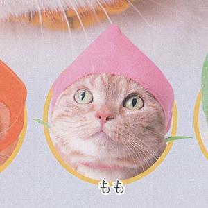 かわいいかわいい ねこフルーツちゃん 2 4:もも ねこのかぶりもの第20弾 奇譚クラブ ガチャポン ガチャガチャ ガシャポン|yuyou