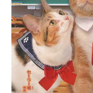 ねこのくびわ コレクション にゃんこ学園 1:セーラー襟 紺色 エール ガチャポン ガチャガチャ ガシャポン yuyou
