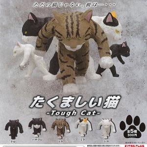 たくましい 猫 全5種セット 12月予約 奇譚クラブ 動物フィギュア ガチャポン ガチャガチャ ガシャポン|yuyou