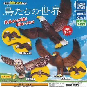鳥たちの 世界 全3種+ディスプレイ台紙セット タカラトミーアーツ ガチャポン ガチャガチャ ガシャポン|yuyou