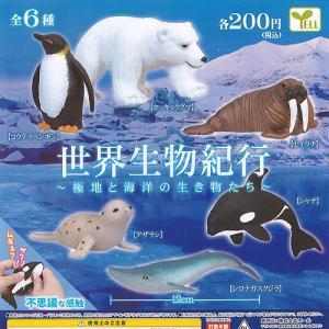 世界生物紀行 極地と 海洋の 生き物たち 全6種+ディスプレイ台紙セット エール ガチャポン ガチャガチャ ガシャポン|yuyou