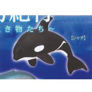世界生物紀行 極地と 海洋の 生き物たち 6:シャチ エール ガチャポン ガチャガチャ ガシャポン|yuyou