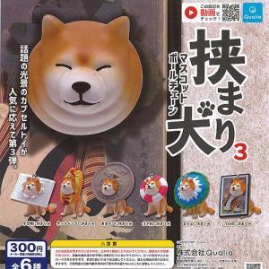 挟まり 犬 3 マスコット ボールチェーン 全6種セット 2月予約 Qualia ガチャポン ガチャガチャ ガシャポン|yuyou