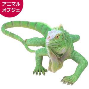 イグアナ グリーン(大)リアル 置物 アニマルオブジェ お店 インテリア QY-154 動物 爬虫類 紅石|yuyu-honpo