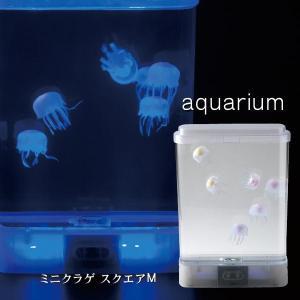 アクアリウム ミニクラゲ スクエアM 18158 シリコン製 インテリア オブジェ 癒し イシグロ|yuyu-honpo