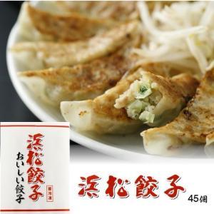 特選はままつ餃子 45個入り 静岡 浜松 ギフト G910045 焼き餃子 代引き不可|yuyu-honpo